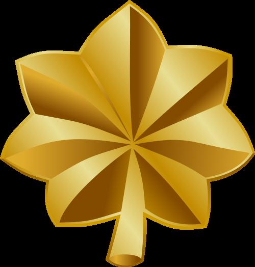 O 4 insignia