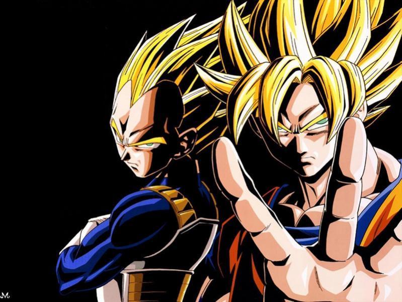 DBZ Goku and Vegata