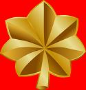 O 4 insignia 1