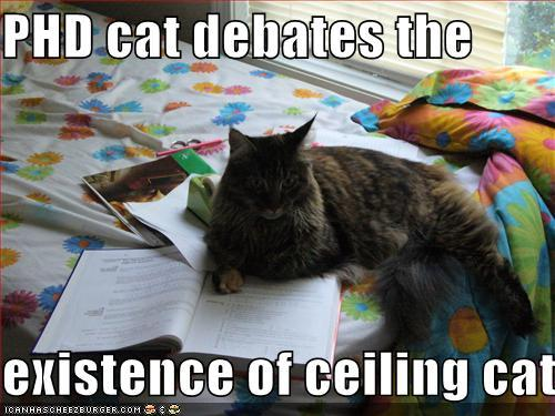 caturday...again
