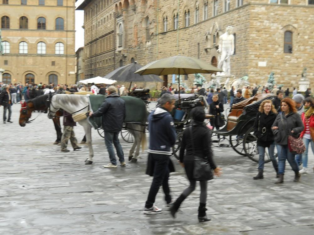 101_-_(Firenze)_Piazza_del_Nettuno.jpg