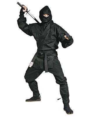 ninja.jpg.a615d7e7d3805f4e10bf3dfd884a60