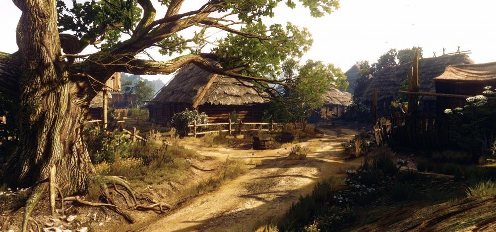 5a26f1d27222d_Little-village-Witcher-3.thumb.jpg.2c783e3840a4e68d3c7ada5f16066adb.jpg