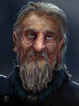 old_wizard_by_jjpeabody-da9buz0.jpg.fd53d362d08236142c814afcd1957f4b.jpg