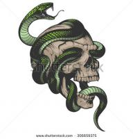 Serpent's Skull -Green Group