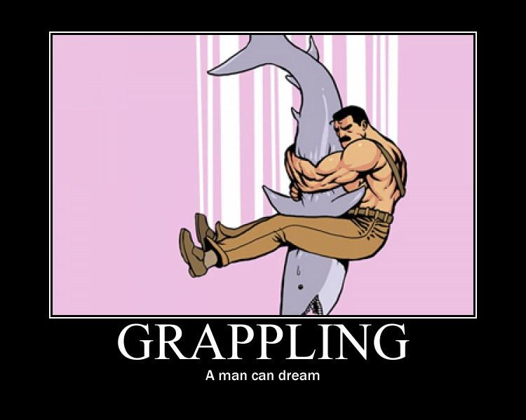 Grappling-shark.jpg.d0209f7daa0aabcc9ddecce510915c09.jpg