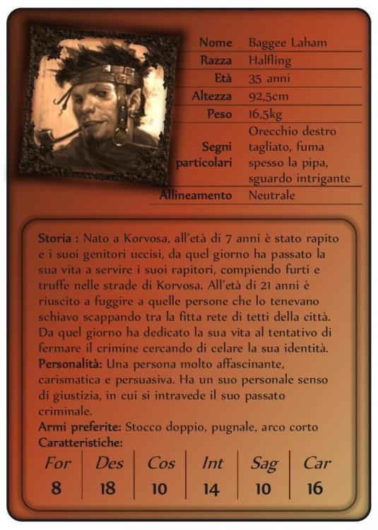 Baggee Intro Card.jpg