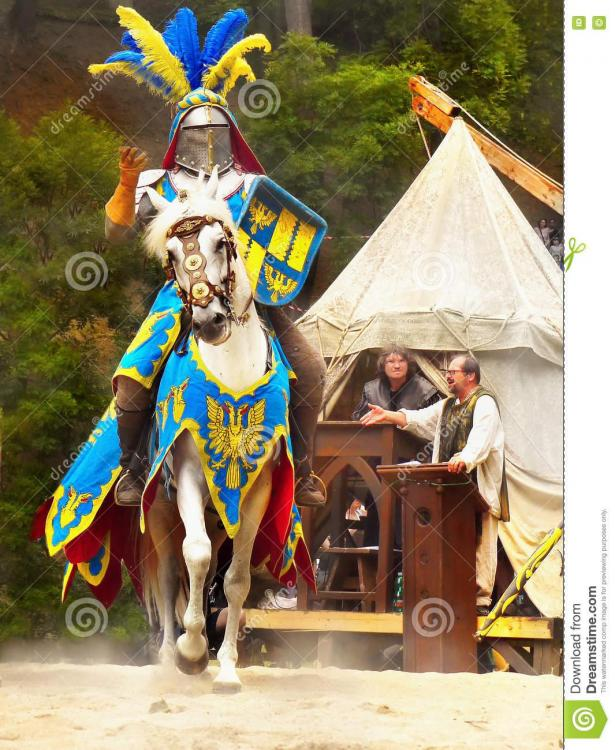 cavaliere-sul-cavallo-75816695.jpg