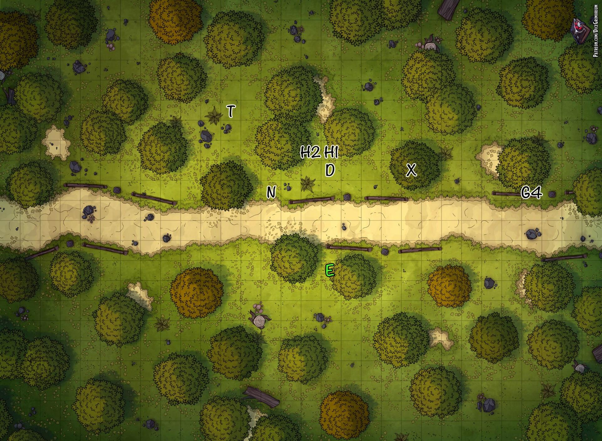 forestroad_3
